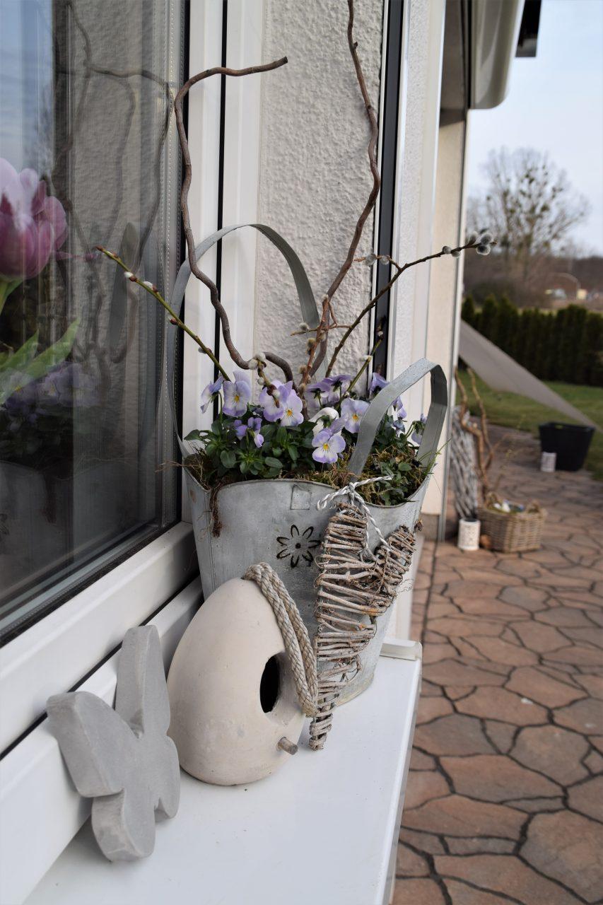 Schon ein bisschen Frühling im Garten…