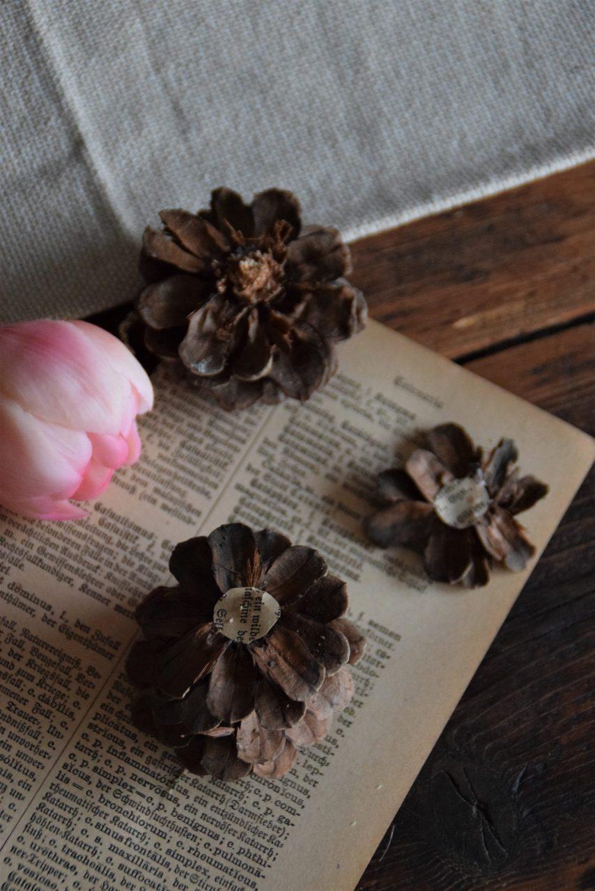 3 DIY Anleitungen zu Blüten aus Tannenzapfen
